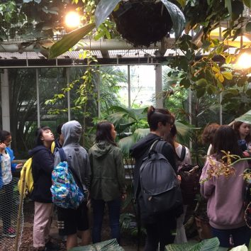 http://www.cambridgedream.com/wp-content/uploads/2015/03/Cambridge-University-Botanic-Gardens-1.jpg