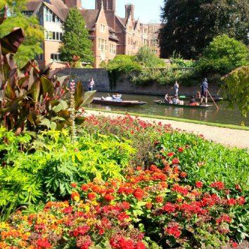 http://www.cambridgedream.com/wp-content/uploads/2015/03/Clare-College-Fellows-Garden-Cambridge-1.jpg