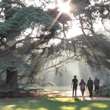 http://www.cambridgedream.com/wp-content/uploads/2015/03/Girton-College-Gardens2.png