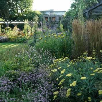 https://www.cambridgedream.com/wp-content/uploads/2015/03/Kings-College-Fellows-Garden-Cambridge-1.jpg