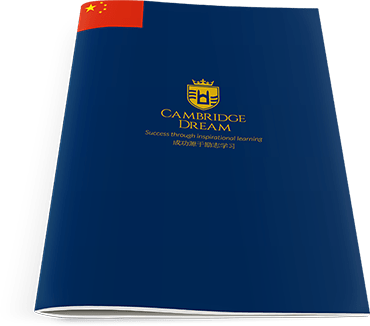 Download Chinese Brochure